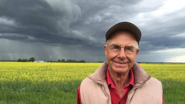 Southern Alberta farmers hope to pull bumper crop this year