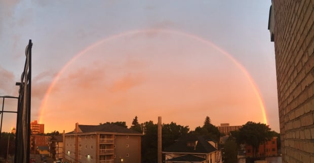regina rainbow