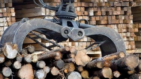 Softwood Lumber 20160619