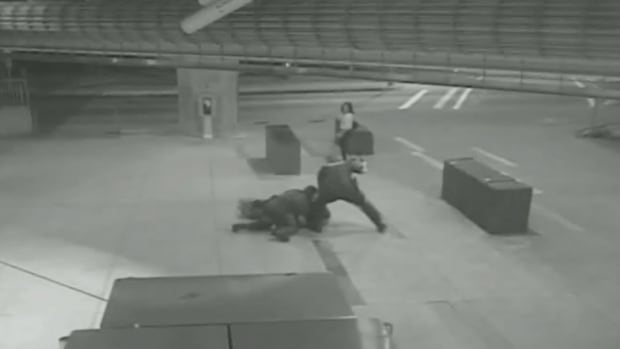 Video surfaced in 2016 depicting a 2011 incident in which Transit Police try to detain a UBC student at the Rupert Street SkyTrain station.