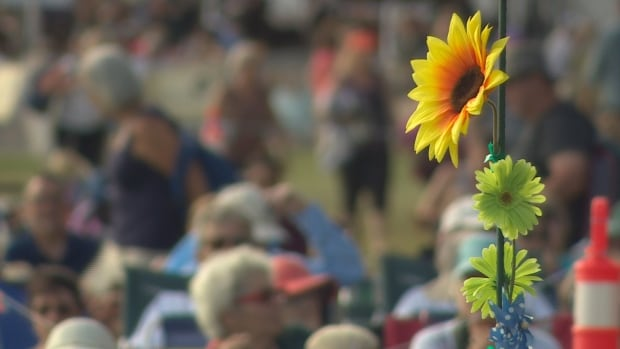 Winnipeg Folk Fest cancels August events due to COVID-19