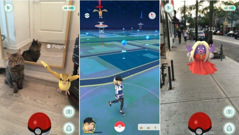 e407f5a39 Pets can't see the augmented reality Pokemon on your smartphone screen, but  players really like to pretend they're battling anyway. (Lauren O'Neil/CBC)