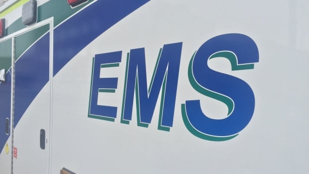 An elderly woman has died after being struck by a vehicle in Brampton.
