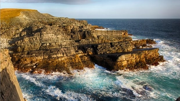 The Mistaken Point ecological reserve has been named a UNESCO World Heritage Site.