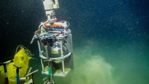 Offshore earthquake sensors