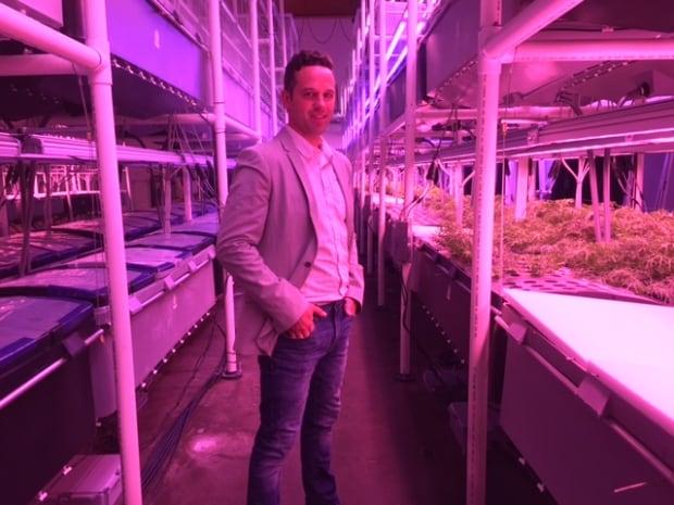 harvest urban farms