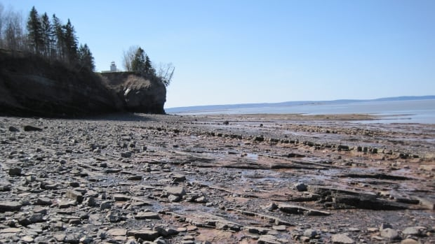 Blue Beach in Kings County has scientists excited about the secrets it is finally revealing after 50 years of research.