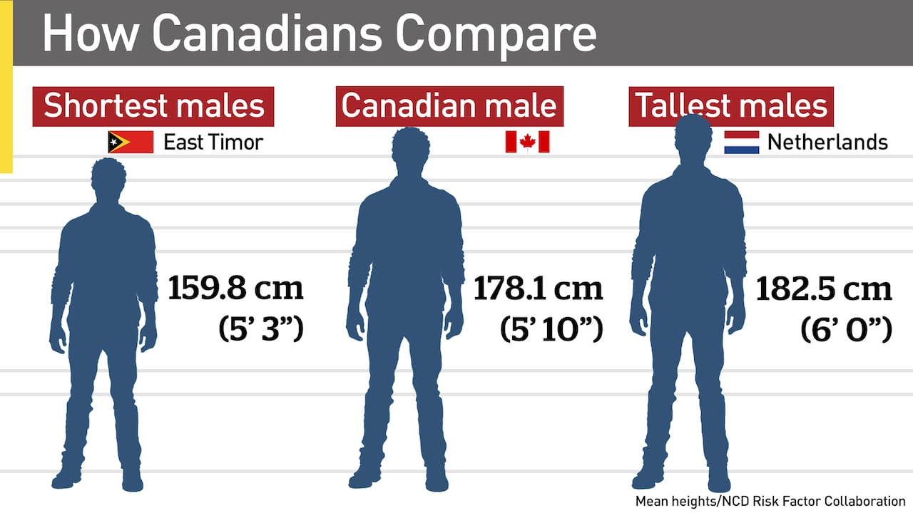 Canadians Still Getting Taller But Not As Fast As Others Cbc News