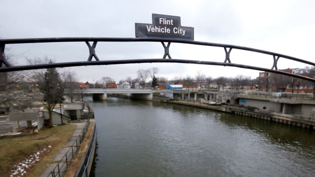 The head of the Michigan health department was charged Wednesday with involuntary manslaughter in Flint's lead-tainted water crisis.