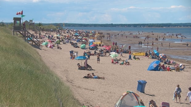 Parlee Beach's water has seemingly sporadic dips in its cleanliness throughout the summer.