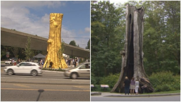 Douglas Coupland's Golden Tree at Marine and Cambie Streets was unveiled on Saturday, August 6, 2016 and is an exact replica of Stanley Park's 800-year-old Hollow Tree.