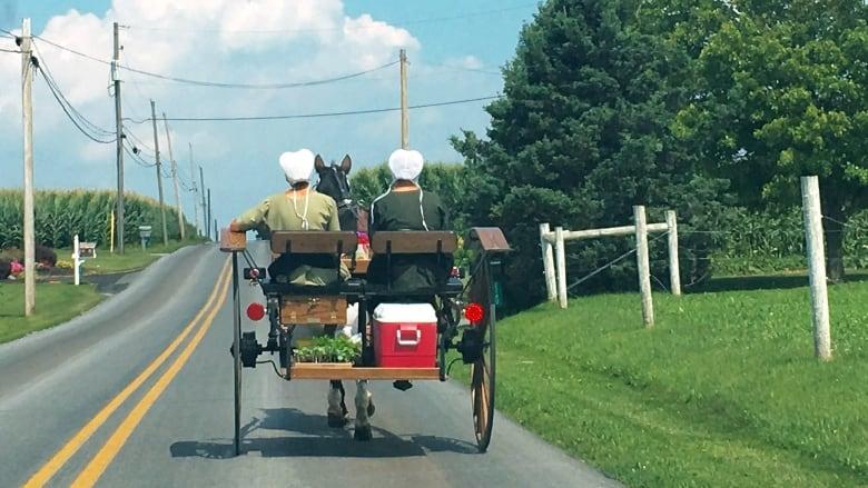 US Elxn Amish 20160807