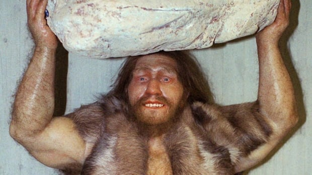 A 1996 photos shows a replica of a Neanderthal man at the Neanderthal museum in Mettmann, western Germany. While there are theories about what Neanderthals wore — including nothing at all — Prof. Mark Collard believes that they used cape-like clothing.