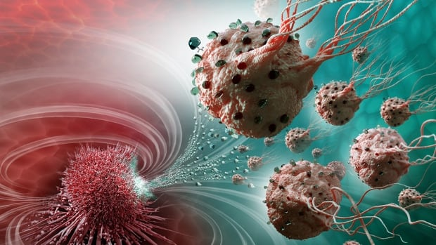 Scientists at Montreal Polytechnique and McGill University report that they have developed a way to direct bacteria carrying loads of chemotherapy drugs directly into a tumour, as shown in this illustration.