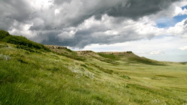 Head-Smashed-In Buffalo Jump is a buffalo jump located where the foothills of the Rocky Mountains begin to rise from the prairie 18 km northwest of Fort Macleod, Alberta.