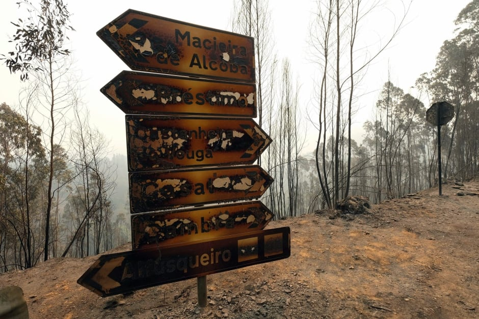Portugal Wildfires Burnt traffic signs