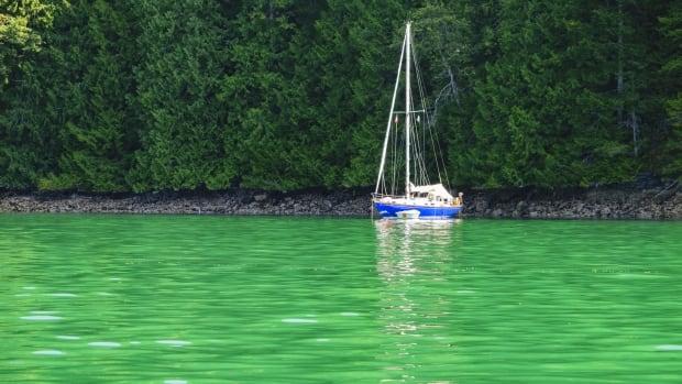 Green Water Desolation Sound Jpg
