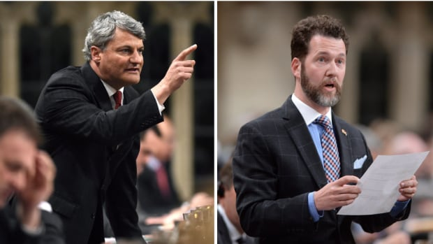Conservative MPs Gérard Deltell and Scott Reid are members of the electoral reform committee.