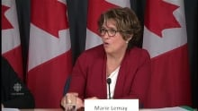 """Marie Lemay says """"termination is the most complex"""" in Phoenix fiasco"""