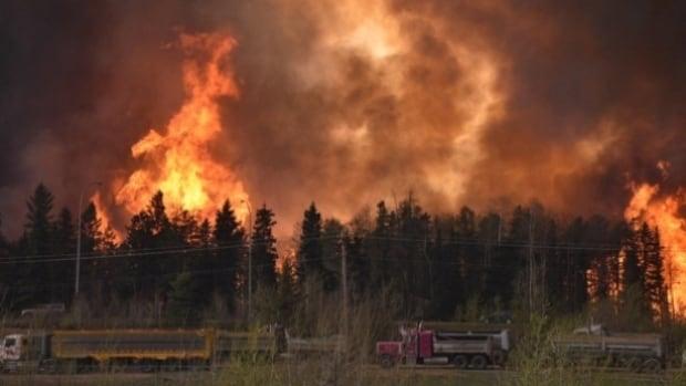 Alberta government provides breakdown of $647M in wildfire costs