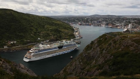 German singer goes overboard from cruise ship near Newfoundland
