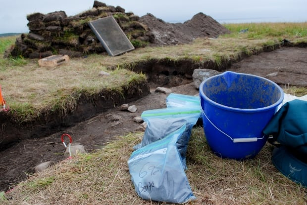 Point Rosee archeological dig for Vikings