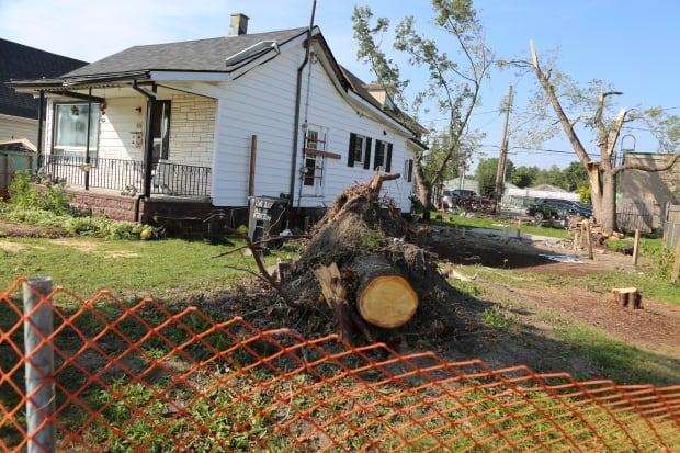 WDR - Riberdy Road Windsor - Tornado Aftermath - September 7, 2016