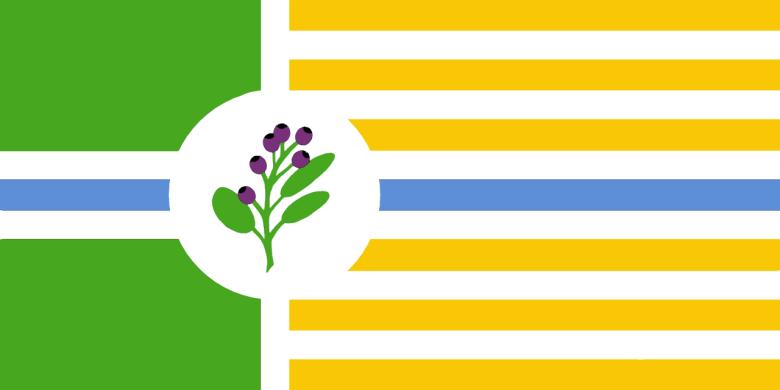 Saskatoon has a city flag, but is it a good one? | CBC News