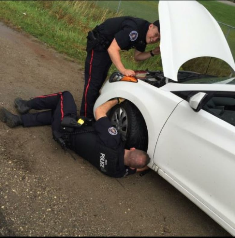 Guelph Police Officer Uses Lunch To Lure Kitten From Car Engine