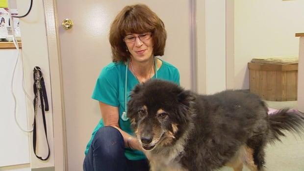 Dr. Judith Samson-French, the Bragg Creek veterinarian