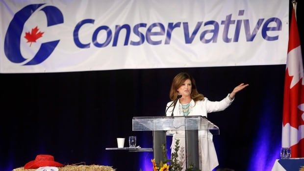 Interim Conservative Leader Rona Ambrose has helped retain most of her party's support since the last election. It will be up to the permanent leader to grow support.