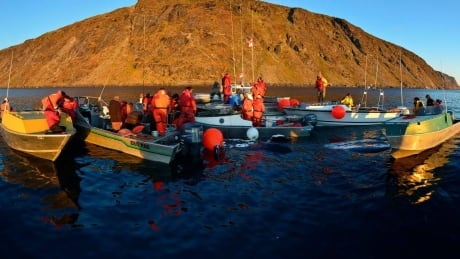 image of pangnirtung bowhead whale hunt