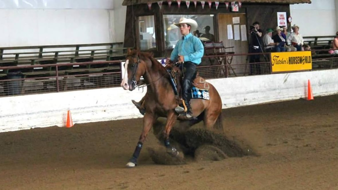 Equine Flu: Horse Owners In Cape Breton On Lookout For Equine Flu