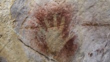First Signs - Hand Print