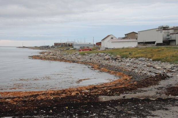 Arviat shoreline
