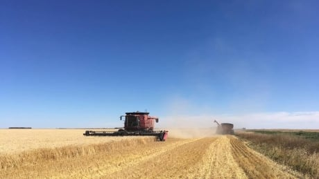 Glaze combine harvest