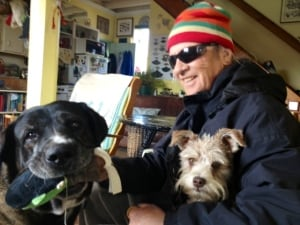 Greg 'Cominco' Loftus with dogs