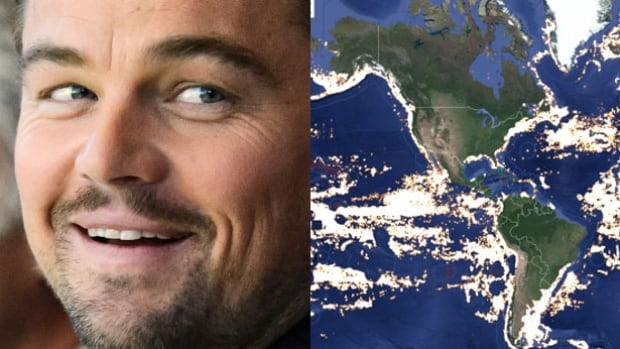 A new app unveiled by actor Leonardo Di Caprio allows anyone with an internet connection to monitor international commercial fishing operations.