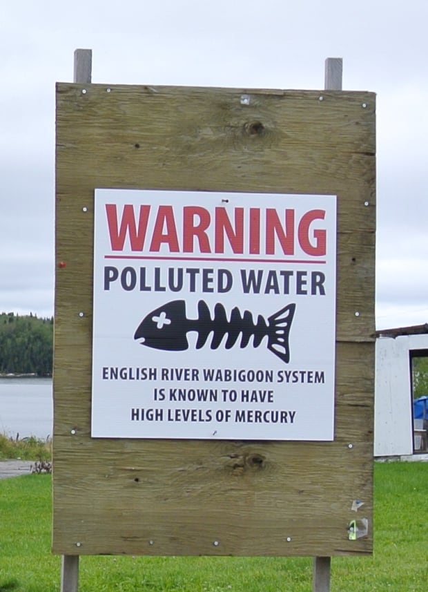 Ontario knew about mercury contamination near Grassy Narrows in 1990: report
