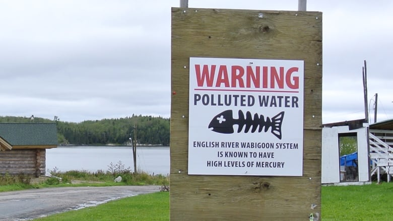 Supreme Court says firms must pay for mercury-contaminated mill site at Grassy Narrows