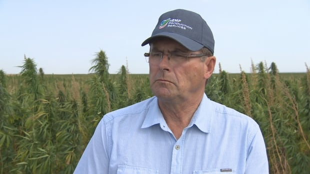 Garry Meier, president of Hemp Production Services, says hemp differs dramatically from marijuana when it comes to production and handling methods.