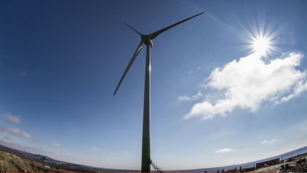 Council debated whether to invest in renewable energy certificates or municipal green energy initiatives.
