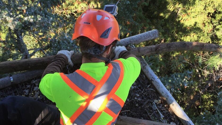 Eagle nest repair