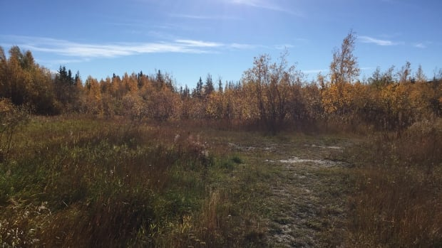 The site proposed for the camp, behind Yellowknife's Fieldhouse, remains devoid of activity. In June, the company said the site required significant work.