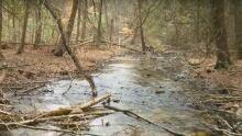 Brydson Creek