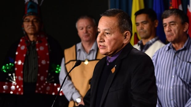 Grand Chief Stewart Phillip, President of the Union of B.C. Indian Chiefs, speaks as B.C. First Nations Leaders come together to voice their rejections for the Petronas Pacific Northwest LNG project during a press conference on Parliament Hill in Ottawa on Tuesday, April 19, 2016.