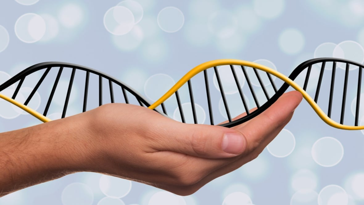 Insurance lobby could be linked to Liberal flip-flop on genetic testing bill, senator says