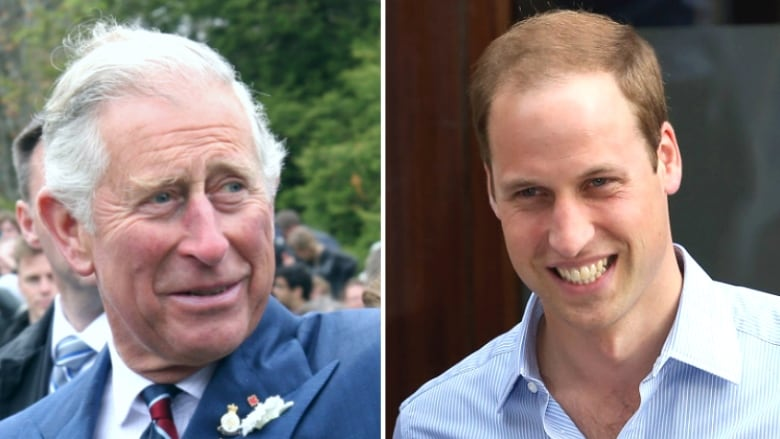 Prince Charles Vs Prince William Who Should Be The Next King Of