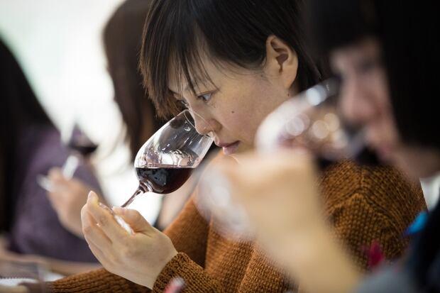 wine class 2