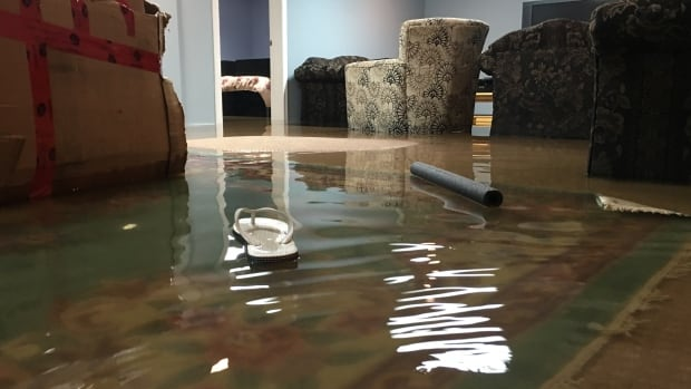 A new survey conducted by the University of Waterloo showed that few Canadians feel they are at risk for flooding, and few know if their insurance would cover flood damage.